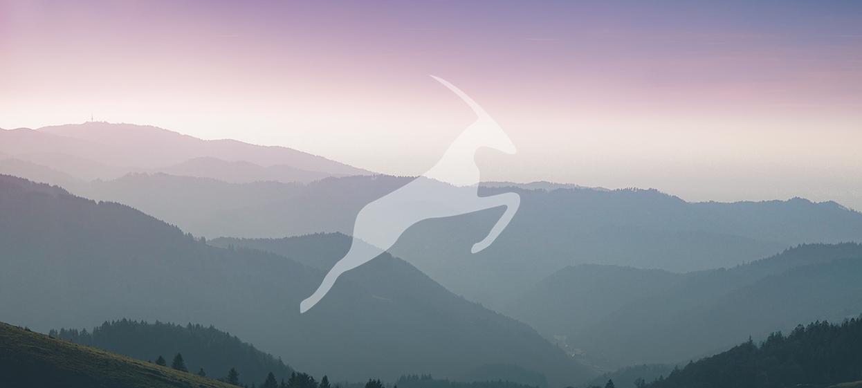 Gazella har ett bildspråk med stort fokus på naturmiljöer